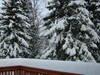 Snow_54608